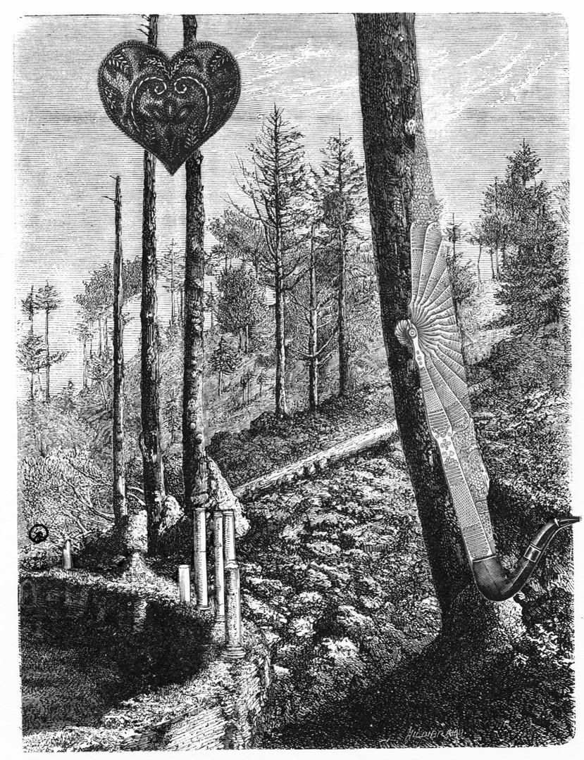 Árboles sepultados