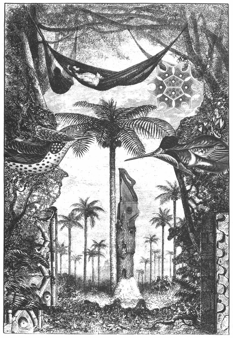 La palmera