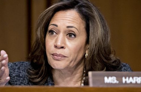 Kamala Harris and other prominent Democrats want to repeal Trump's tax cuts and replace them with ca