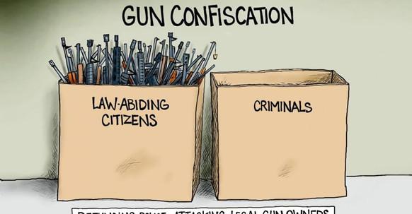 Gun Confiscation.jfif