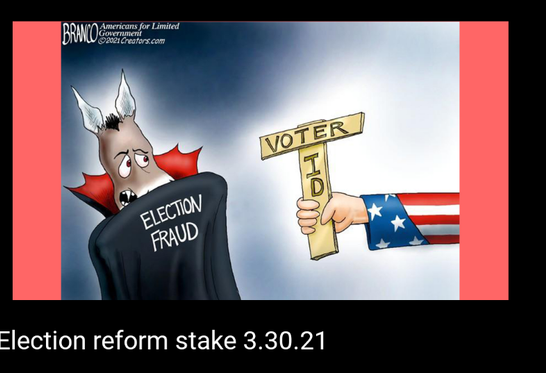 Voter ID.png