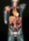 body mri.PNG