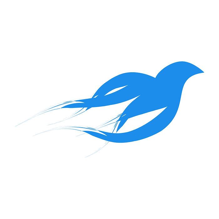 2nd-Wind-Restoration-Ministry-Logo-C4-Icone.jpg