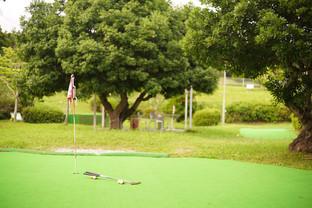 浜松市 パターゴルフ