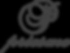 Priesme_logo_i_PNG.png