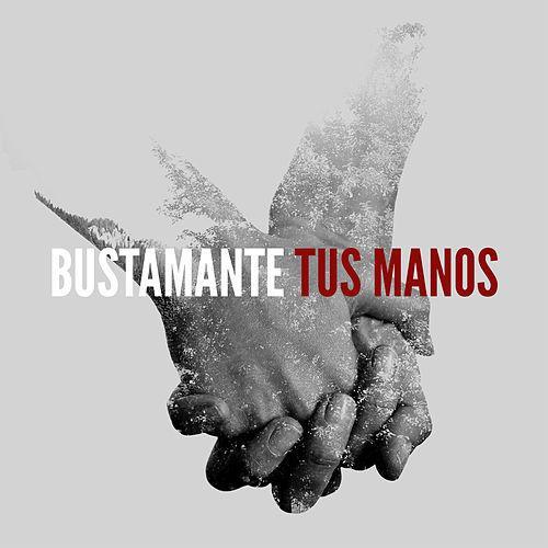 David Bustamante - Tus Manos
