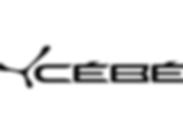 cebe web logo.png