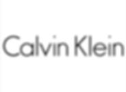 calvin klein web logo.png