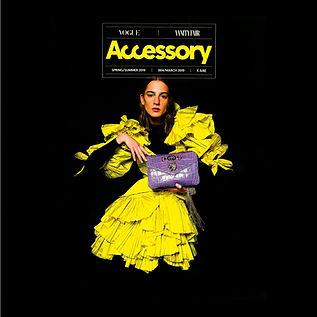 02 accessory.jpg