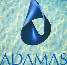 Logo_ADAMAS_rgb_72dpi_edited_edited_edited_edited.jpg