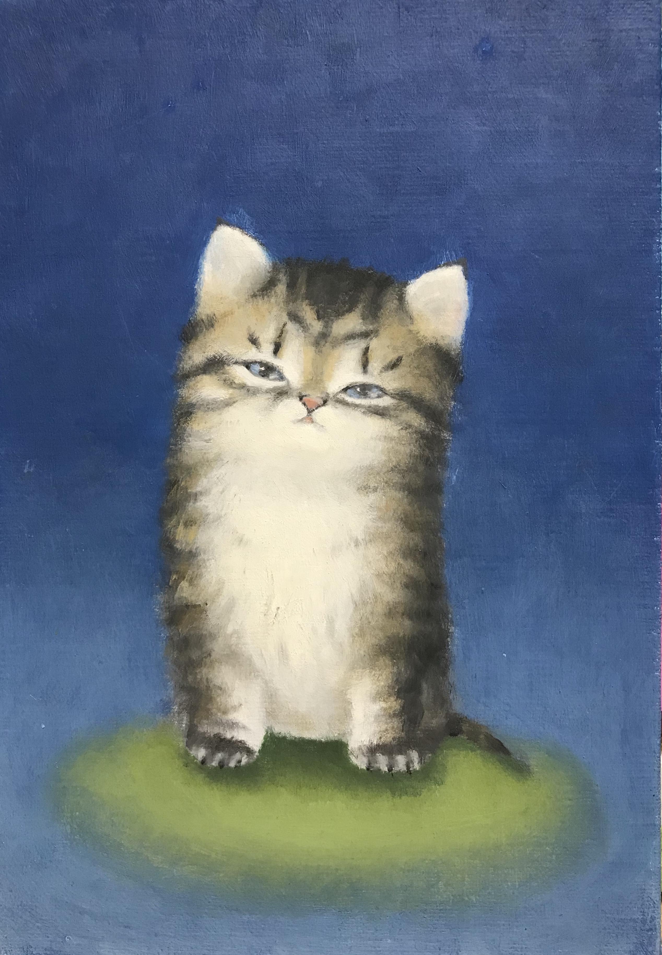 SM 仔猫