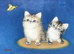 F4 仔猫の姉弟
