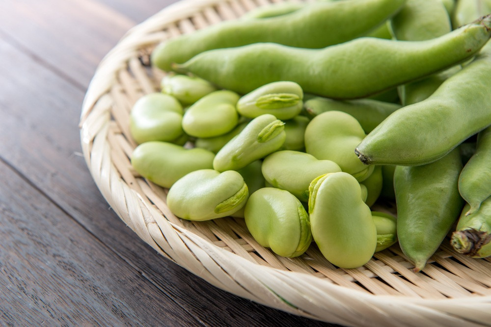 Habas / Broad beans