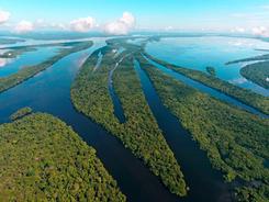 Arquipélago das Anavilhanas