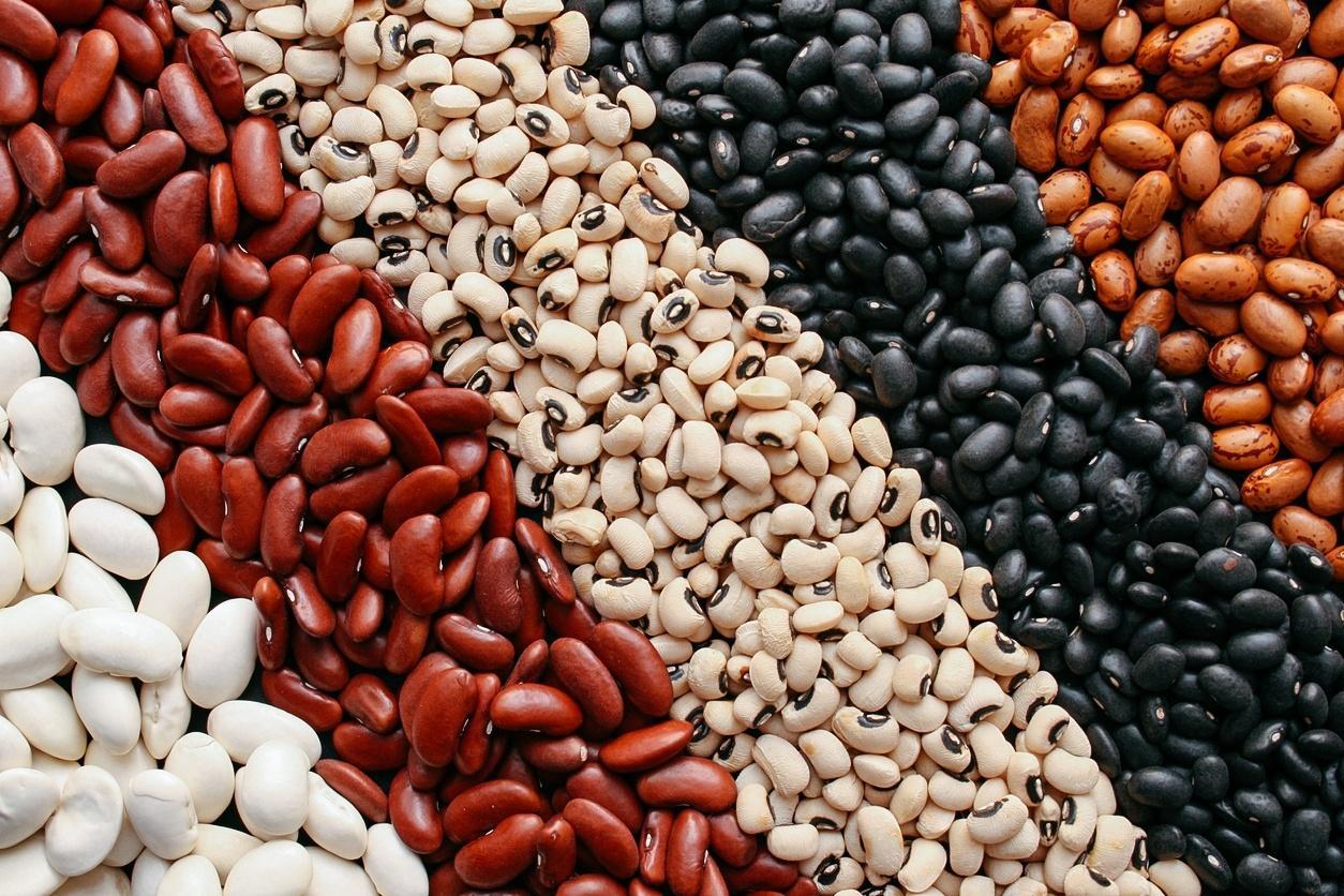 Frejol / Beans
