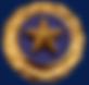Gold Star Pin.png