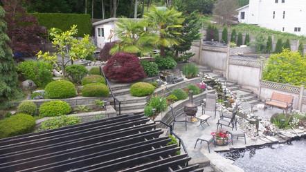 Back Yard Paradise 2