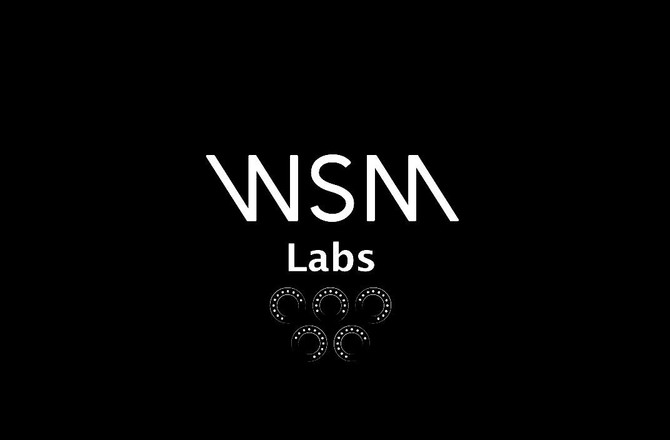 WSM Labs a new adventure into mastering gear