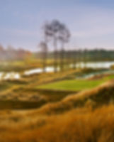North Carolina Golf Course Landscape Architecture