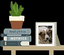 books related to analytics and metrics