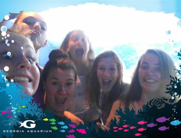 Sapphire Aquarium