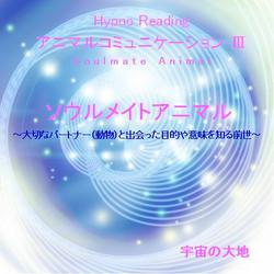 アニマルコミュニケーションCD3 ソウルメイトアニマル~大切なパートナー