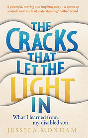 The Cracks Book Jacket.jpg