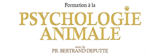 titre formation.png