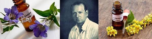 Dr Bach et ses élixirs floraux