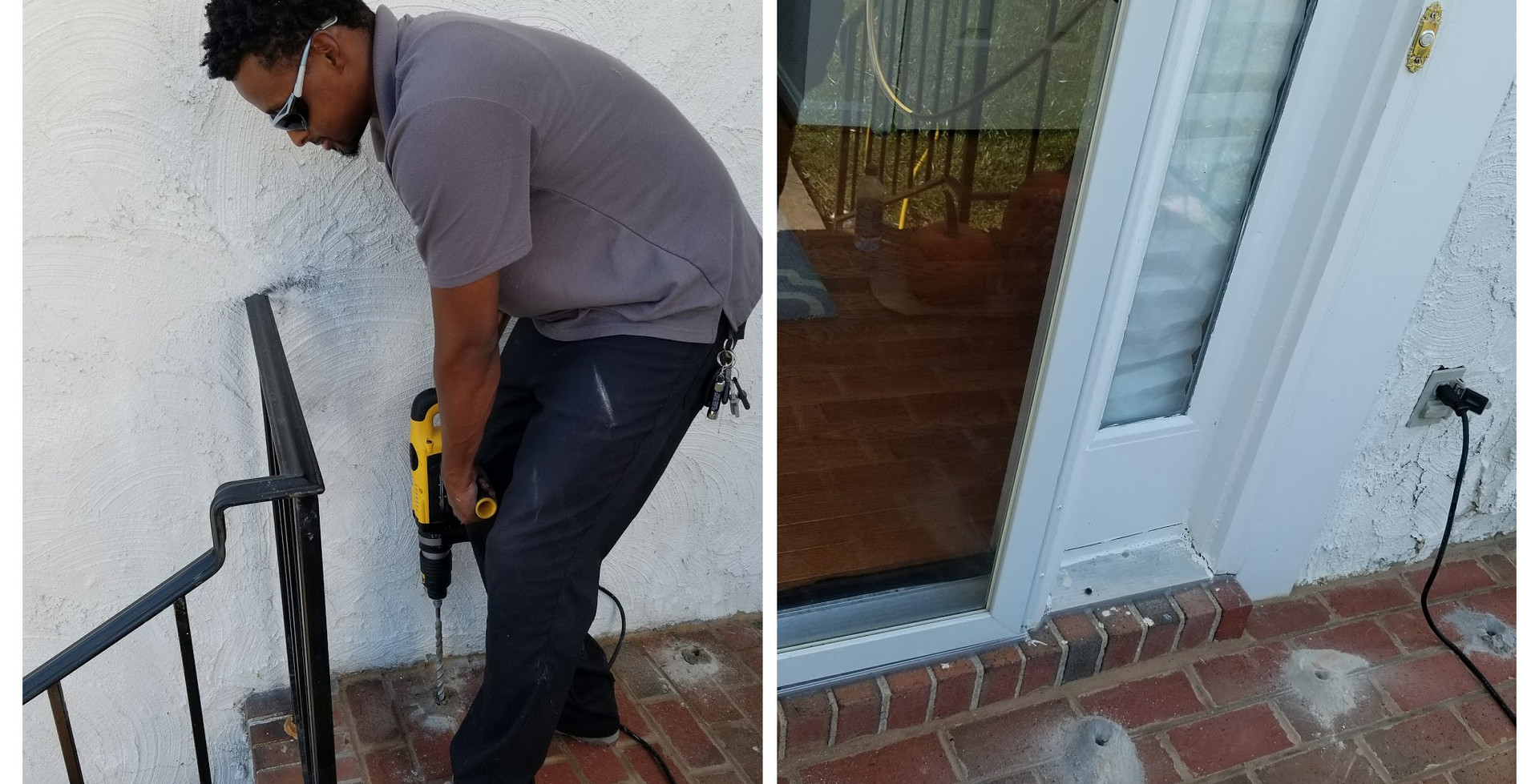 Pest Removal and Maintenance
