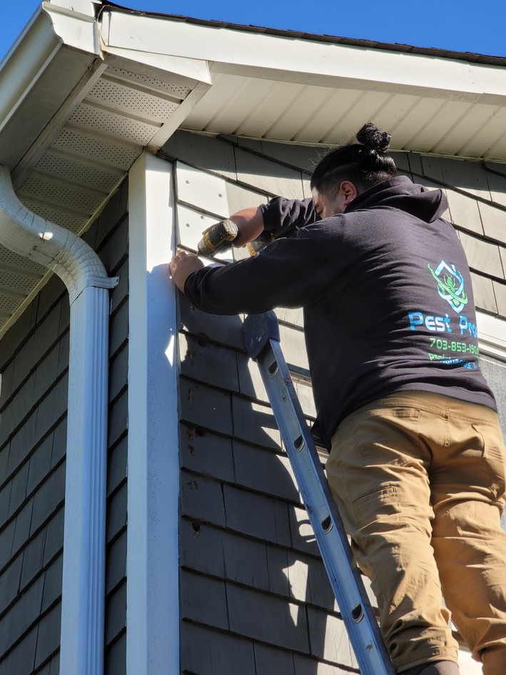 Replacement of the wooden siding