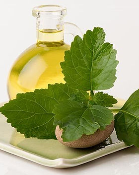 Patchouli-oil-uses.jpg