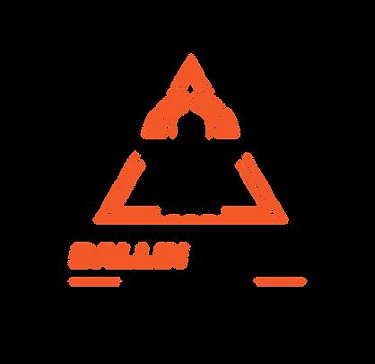 BallinWith A Playbook 8 Week Group Mentorship Program