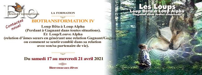 Biotransformation IV loup 17 au 21 avril