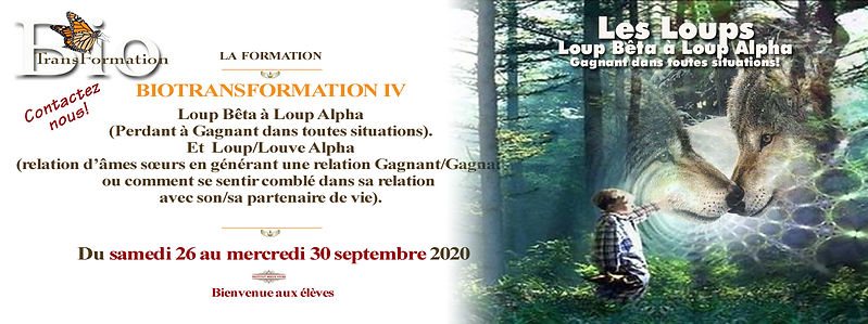Facebook  La  formation  B.T.IV loup sep