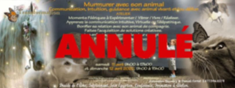 facebook - Murmure avec les animaux text