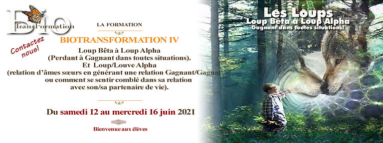 Facebook  La  formation  B.T.IV loup jui