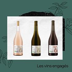 Secrets d'Epiciers Fournisseur Epicerie Fine Apéritifs Boissons Cocktails Vins
