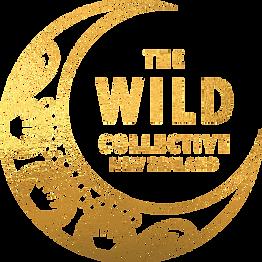 TWC_Logo_NEWZ_Gold.png