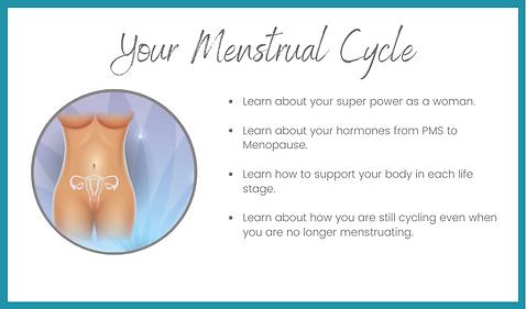 my menstrual cycle.png