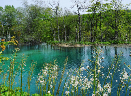 Photos that will inspire you to go to Plitvice Lakes
