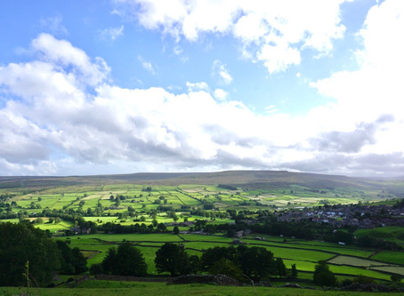 Yorkshire Dales - the land of fields and sheeps