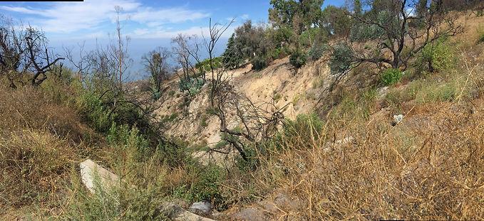 right side landslide.jpg