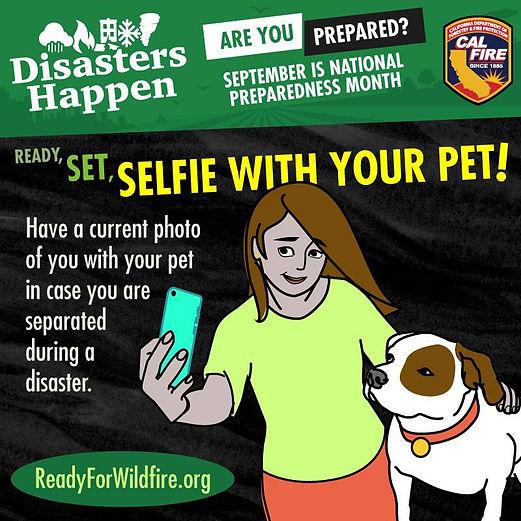 selfie with your pet