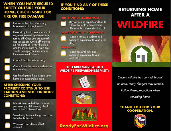 after a wildfire flyer