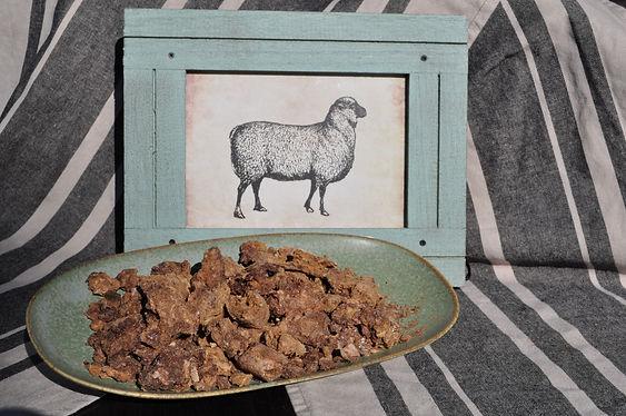 Blend picture lamb.JPG