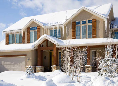 A Guide to Winter Pest-Proofing