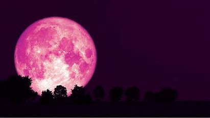 Strawberry Moons Forever!