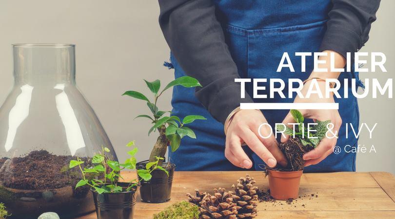 ATELIER TERRARIUM / CAFE A / IVY & ORTIE