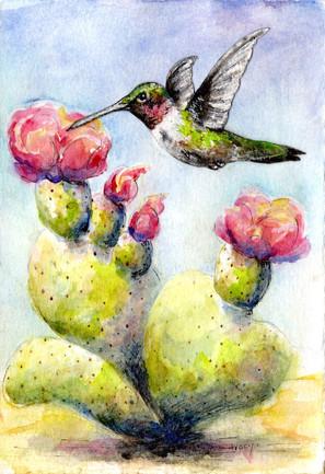 hummingbird cactus.4.5x6.5.jpeg